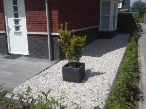 Een plantenbak in het grind bij een modern karakter